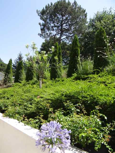 Verdure devant la villa